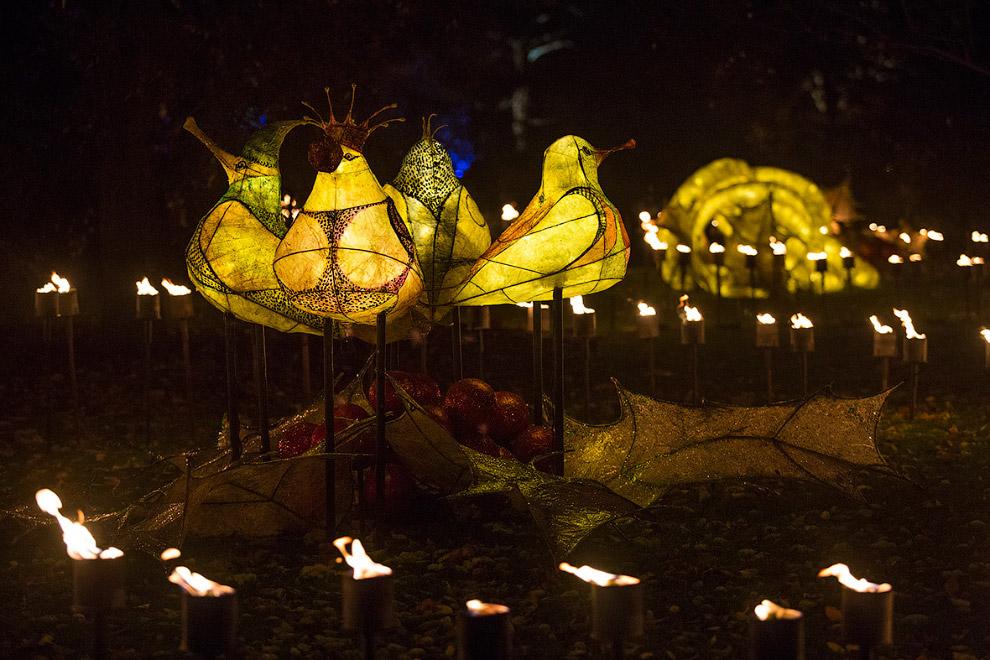 8. Здесь и на заглавной картинке — Пальмовый дом с иллюминацией. Это оранжерея из стекла и кова