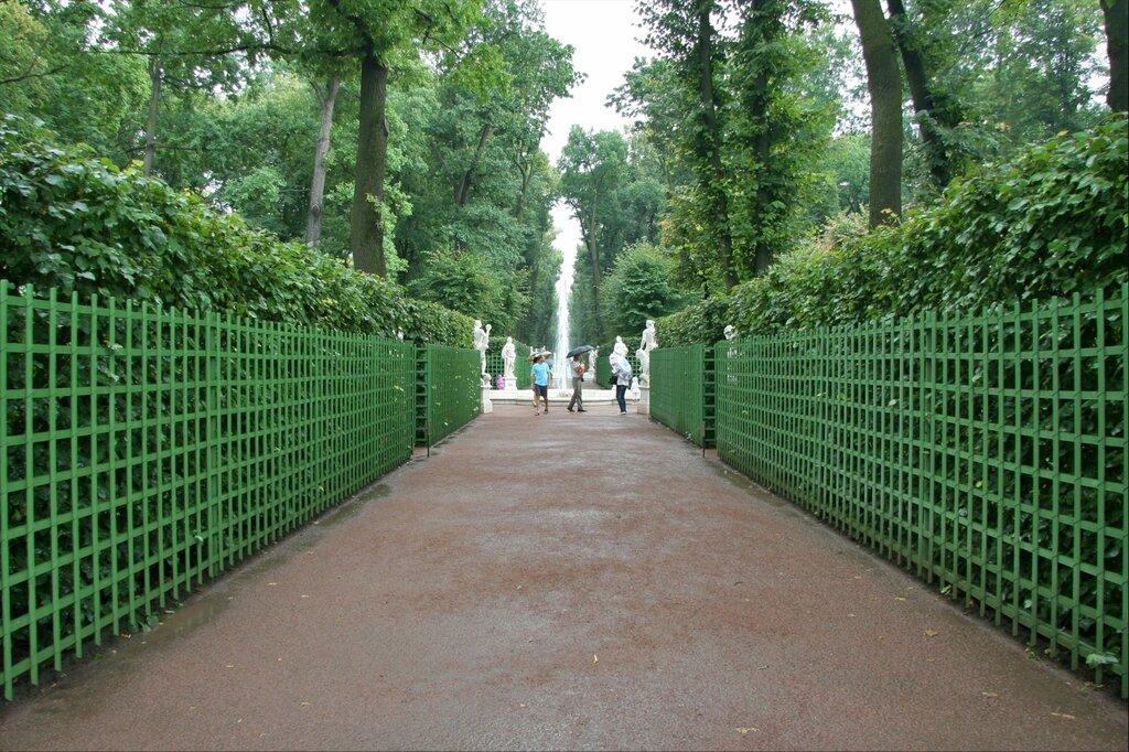 Летний сад, шпалеры и фонтан на Главной аллее