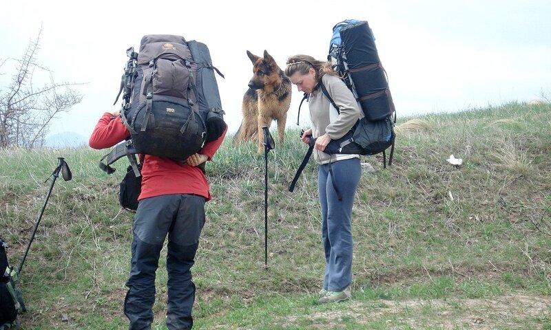 Встретили туристов, которые ходят с собакой