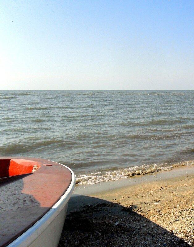 На летнем берегу...