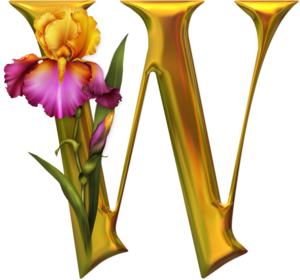 Красивый золотой английский алфавит с ирисами, золотые алфавиты, золото, золотые буквы, алфавит, буквы, урасивые алфавиты,буквы новогодние, буквы рождественские, новогоднее, рождественское, для веб-дизайна, оформление сайтов, оформление блогов, азбука, латиница, кириллица, алфавиты декоративные, буквы декоративные, оформление, декор графический, Новогодние и рождественские буковки для веб-дизайна, буквы новогодние, буквы рождественские,