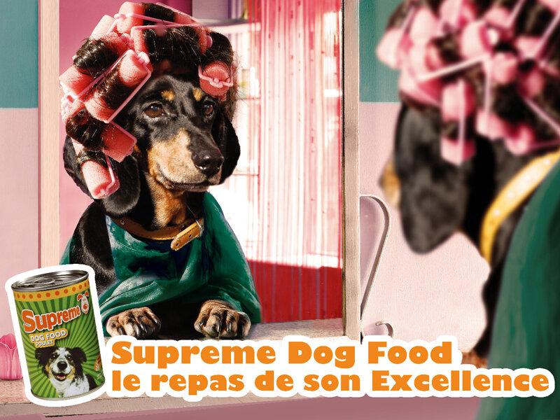 Консервы для собак — «Еда Его Превосходительства»