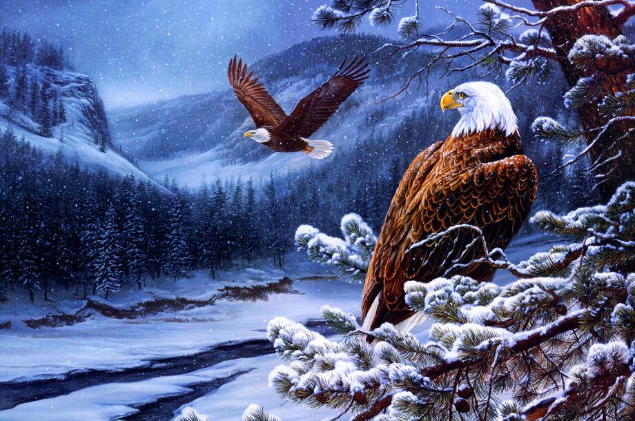 Поздравительные новогодние открытки с годом парящего орла, папе февраля картинка