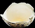 EasterOnTheFarm_Element01 (26).png