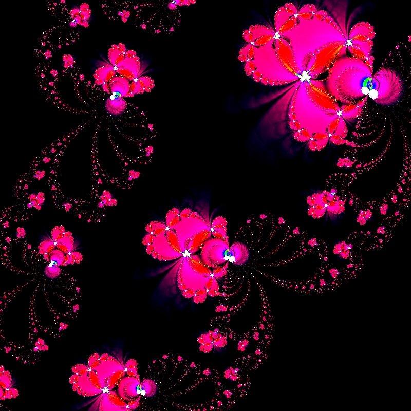 Алый шиповник,дикая роза