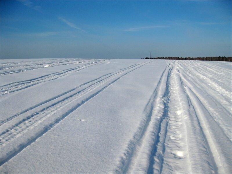 Следы снегоходов в Голенищевском поле