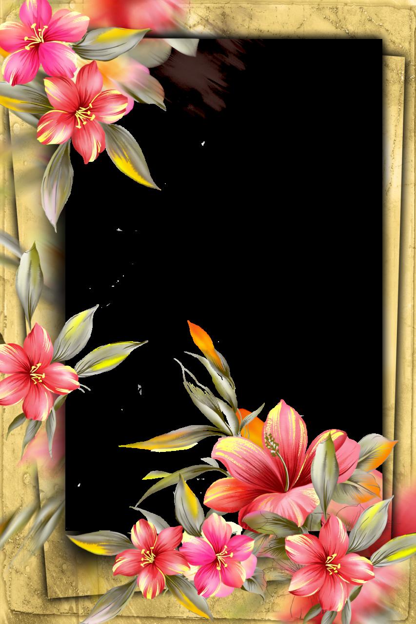 http://img-fotki.yandex.ru/get/6441/41771327.369/0_896a8_c8dc8364_orig.png