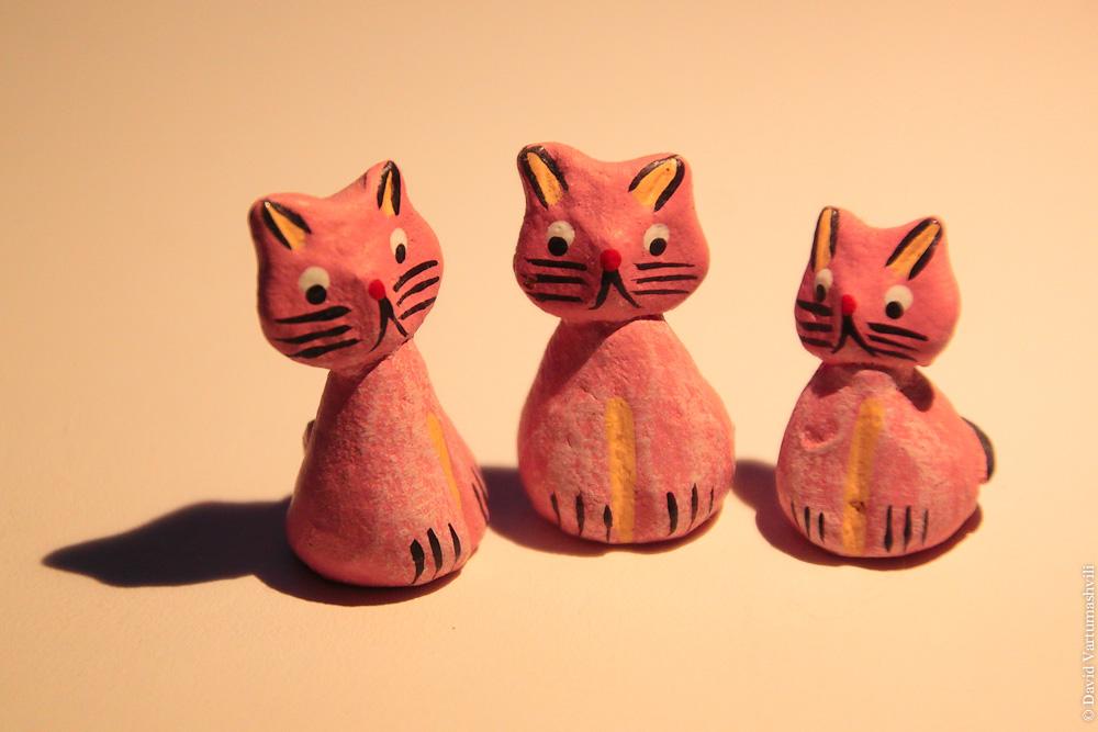 Никарагуанские котики