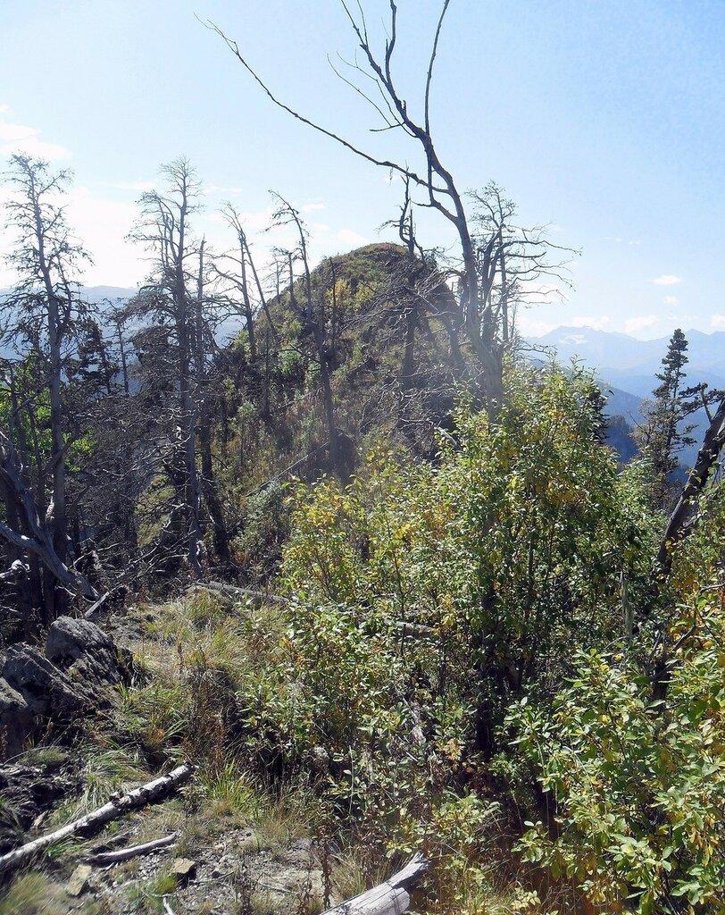 Тхач, на тропе туристической, Кавказ, сентябрь 2012