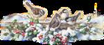 vogeltjes_in_sneeuw.png