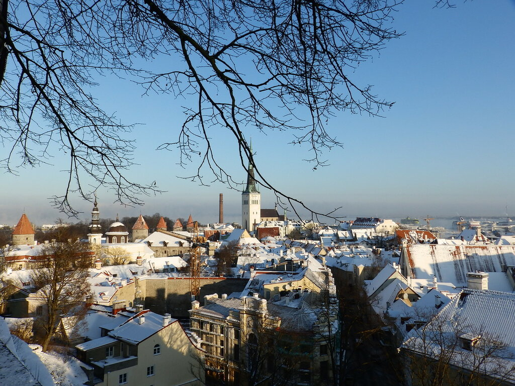 Таллин 10 января