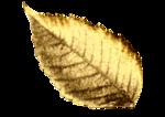 Gold Leaf_5.png