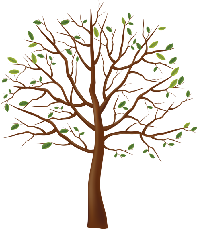 Картинка Для Детей Дерево Без Листьев
