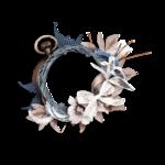 saskia_enapesanteur_clusters (5).png