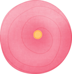 fayette-ofd-flower2-pink.png