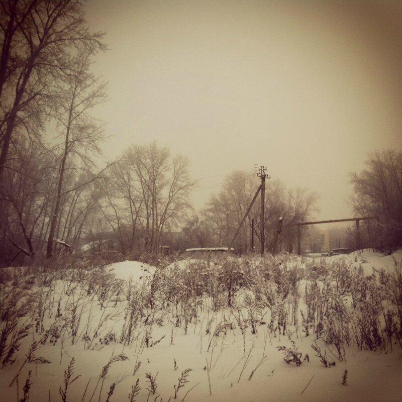 Туман со снегом и снегопад с туманом