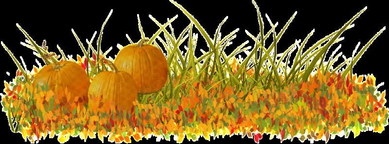 Картинка осенняя трава на прозрачном фоне