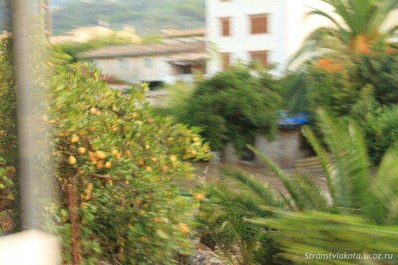 Mallorca, Soller