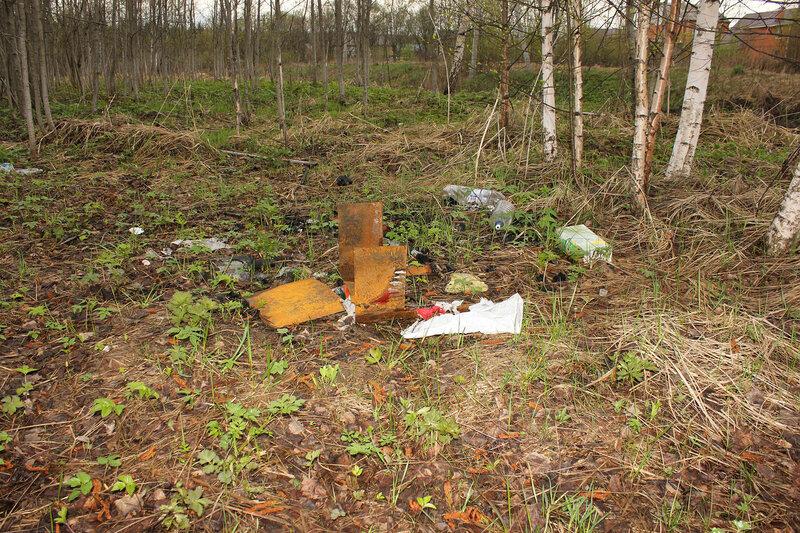Остатки мангала на перегоне Муриково - Шаховская