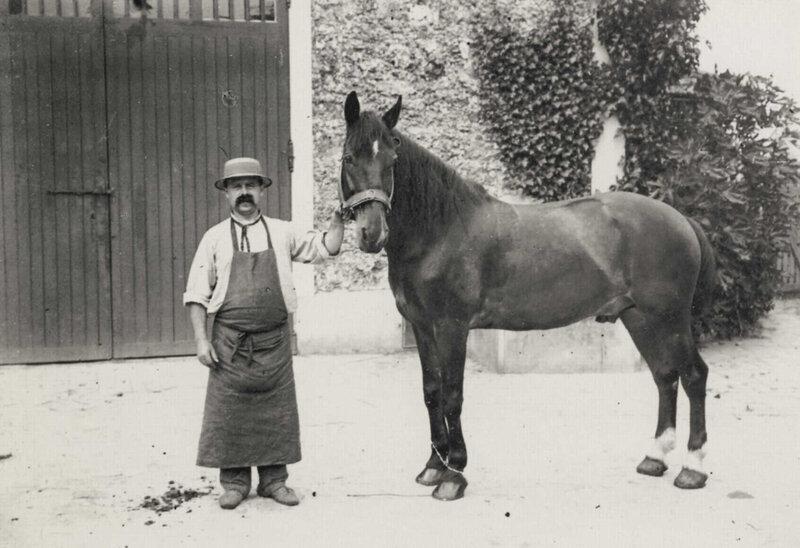 Слуга с лошадью