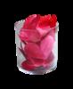Scrap Recipe for love 0_a0a18_4987d0df_XS