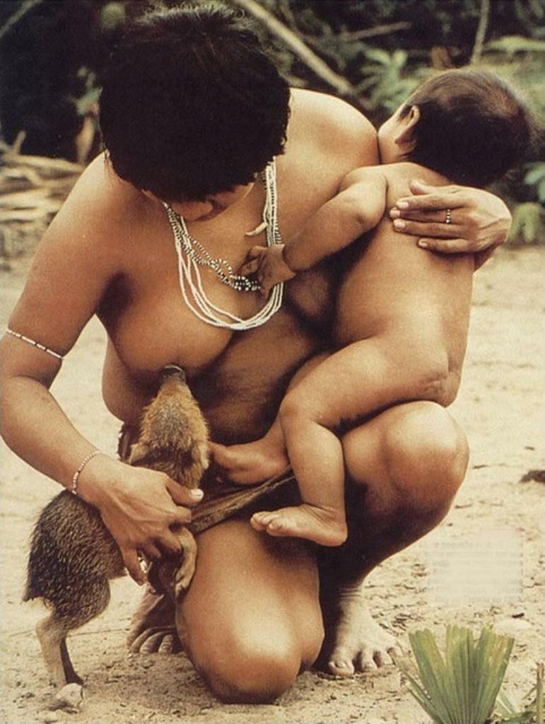 Кормление грудью животного