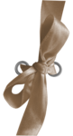 Corinne_Chocolate_Cupcake_Party_TlFment38.png