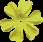 KAagard_WinterWonderland_Flower1B.png