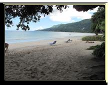 Сейшелы. О. Маэ. Berjaya Beau Vallon Bay Beach Resort & Casino