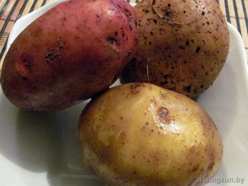 Картошка для чипсов