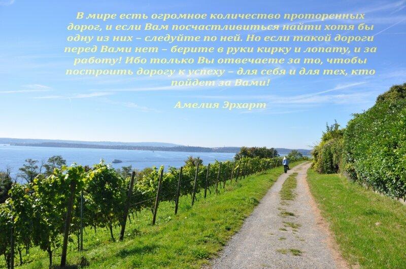 http://img-fotki.yandex.ru/get/6443/25708572.80/0_91d80_67aa858a_XL.jpg