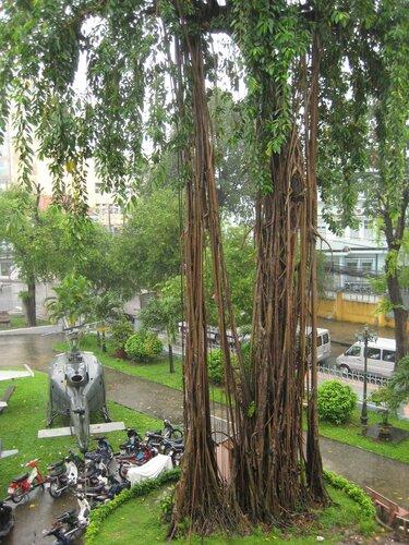Хошиминский музей 4.JPG