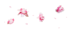 Delicious Pink (124).png