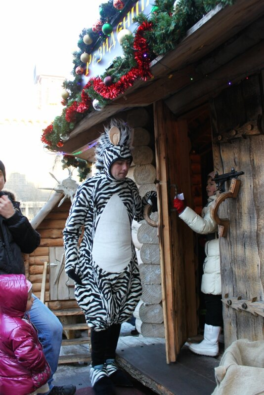 Зебра на входе в резиденцию Деда Мороза