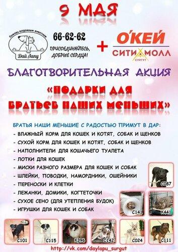 http://img-fotki.yandex.ru/get/6443/5007246.1/0_b80d7_25978ea4_L.jpg