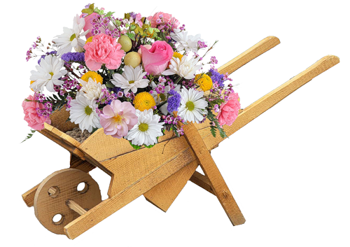 png клипарт,png сад,png цветник,png цветы,png весна,png скрапы,png лето,png растения,скрапы,scrap,пнг клипарт,пнг скрапы,пнг сад,пнг весна,пнг растения,пнг лето,пнг цветы