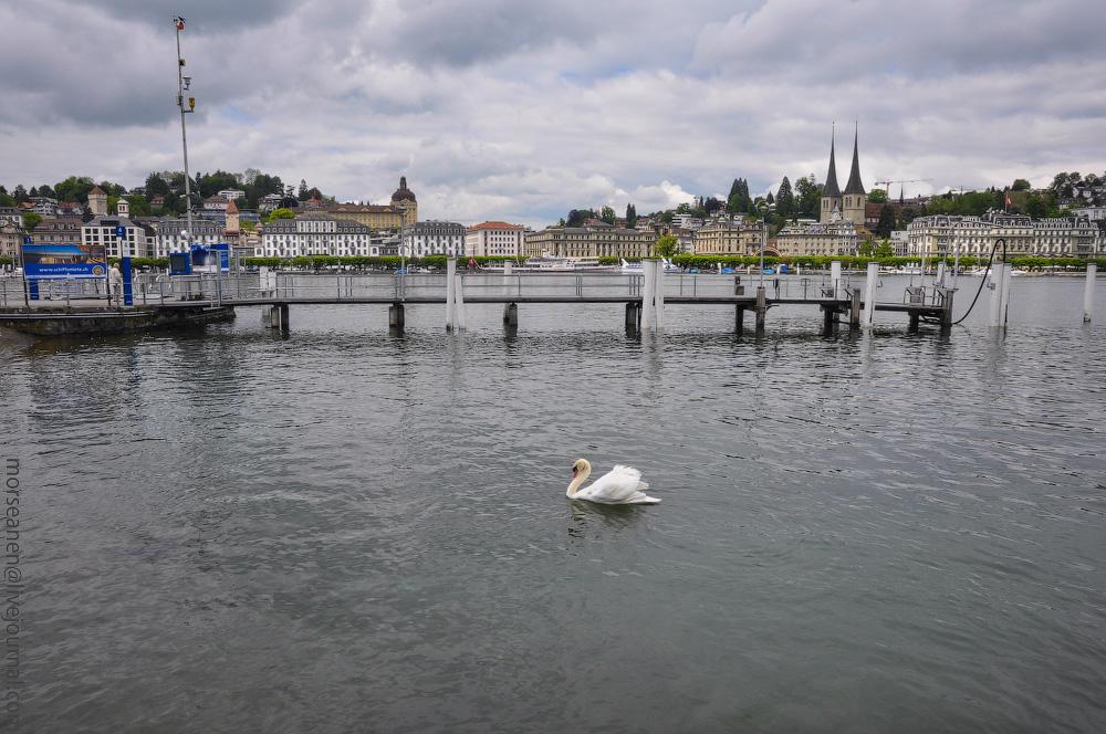 Luzern-(97).jpg