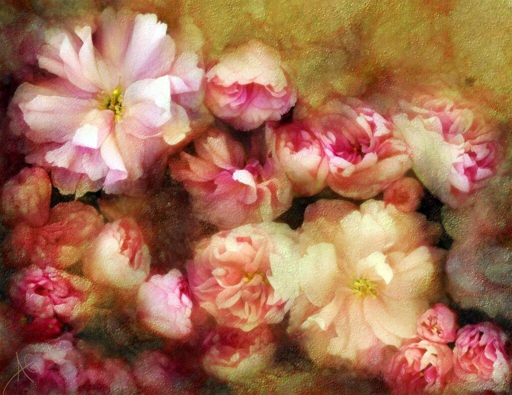 Размещать цветы в горшках на подоконниках в групповых и спальнях