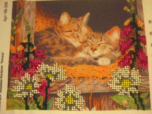 Котята, частичная вышивка бисером