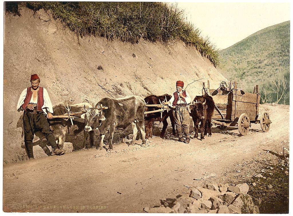 Босния в 1890-1900 годах. 0_8439a_6c3c934f_orig