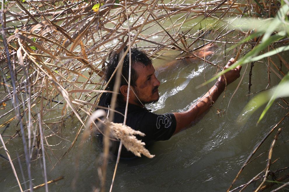 Скрывается в воде реки рио гранде