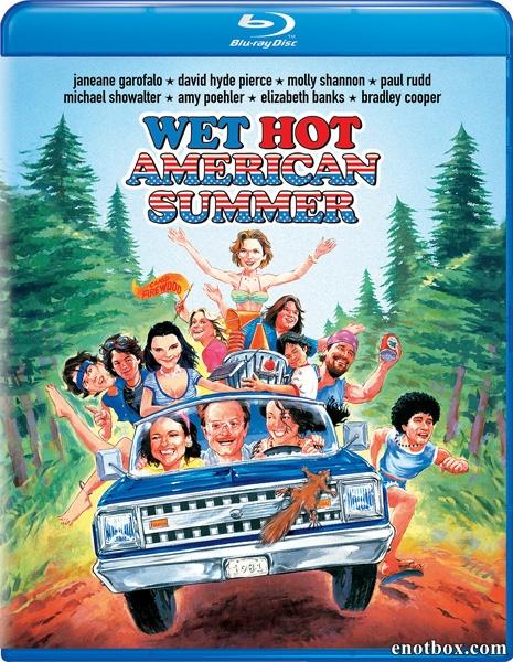 Жаркое американское лето / Wet Hot American Summer (2001/BDRip/HDRip)