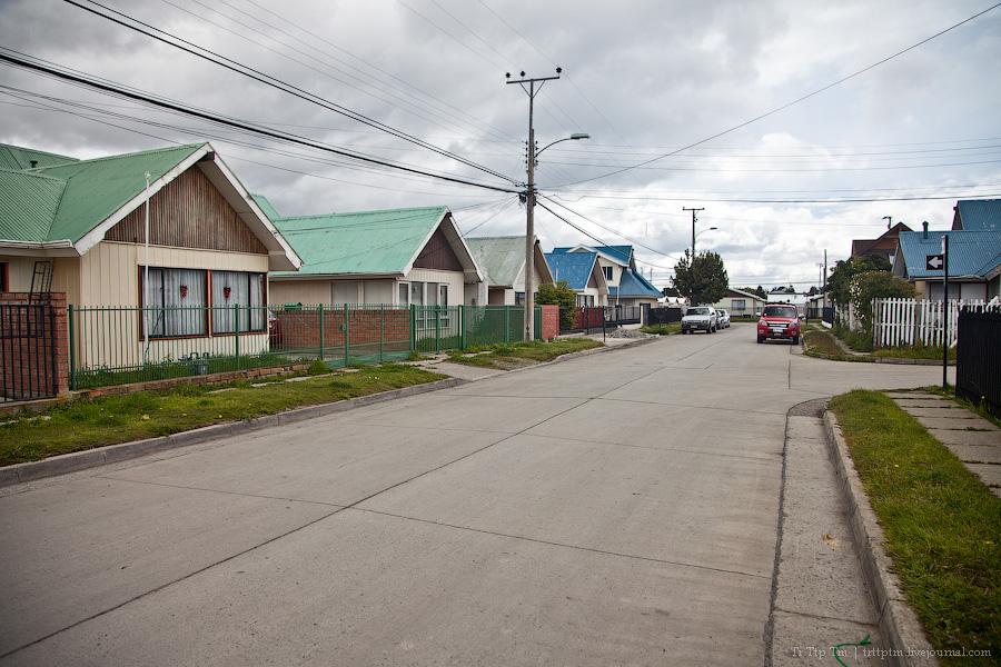 4. Пунта Аренас и фауна Магелланова пролива