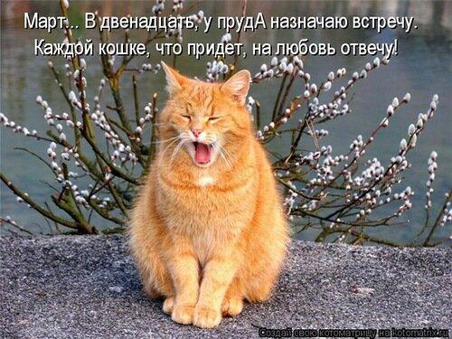http://img-fotki.yandex.ru/get/6444/194408087.2/0_91943_bd97e322_L.jpg