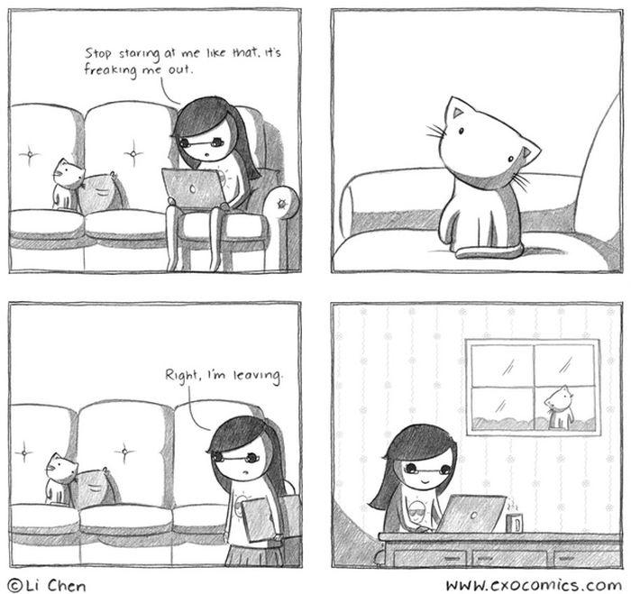 Смешные комиксы про котов на английском языке 0 c6d8b 96773708 orig