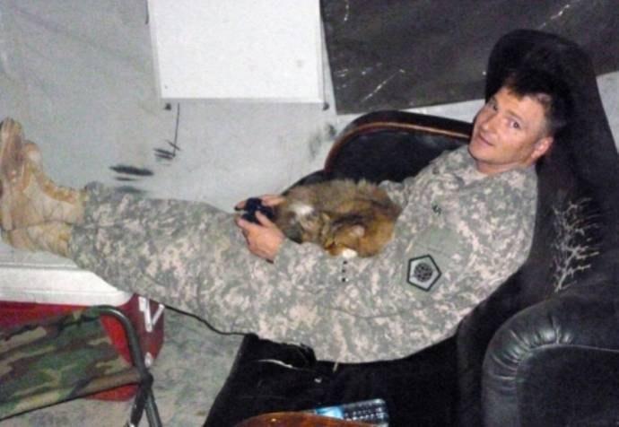 Солдат в Кувейте приютил на военной базе кошку