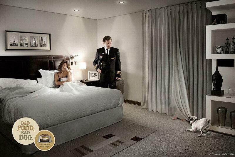 Домашние любимцы в рекламе. Весело и креативно. 20 постеров
