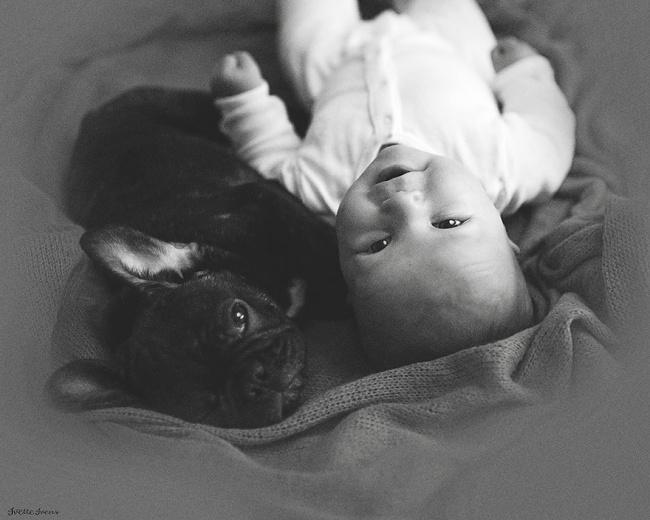«Если Дилан плачет, щенок облизывает шею малыша так, что тот начинает громко смеяться».
