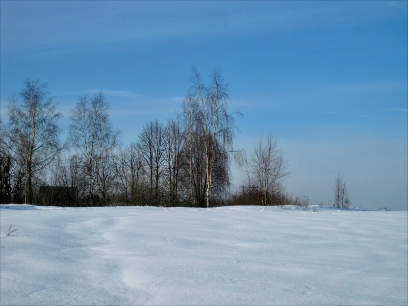 Окраина деревни Голенищево