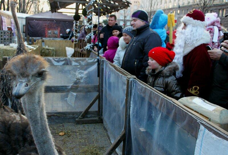 Дед Мороз посетил мини-зоопарк